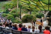 Openluchttheater kindertheater voorstelling