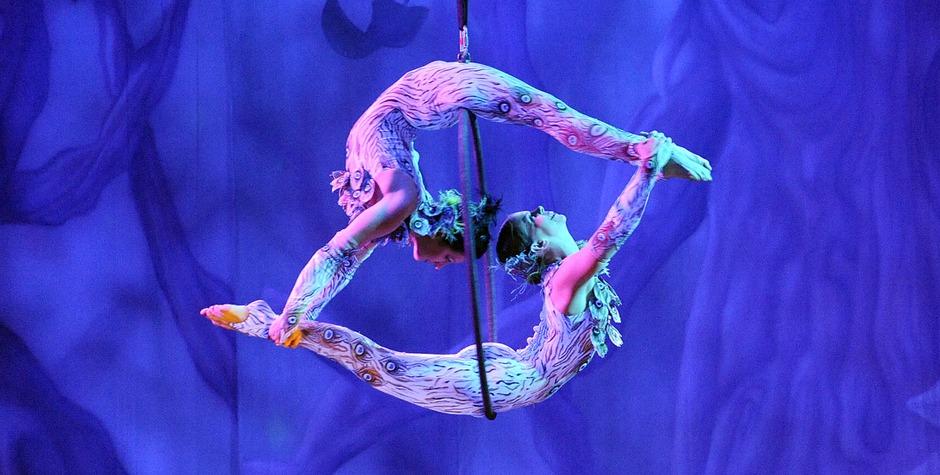 Luchtacrobatiek - variété circus act voor uw congres